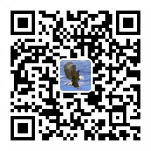 113426upb9068t9u6t66pu-300x300 (1)